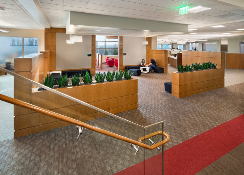 Onyx Pharmaceuticals TI - South San Francisco, CA - GC: BN Builders - Architect: DGA Planning - Photo: Bernard Andre